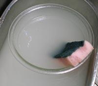 米ぬかで重曹を節約する方法の参考画像